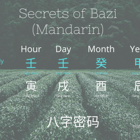 Secrets of Bazi Case Study (八字密码案例) – Mandarin (华语)